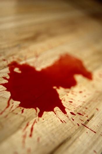 Hasil gambar untuk bercinta berdarah