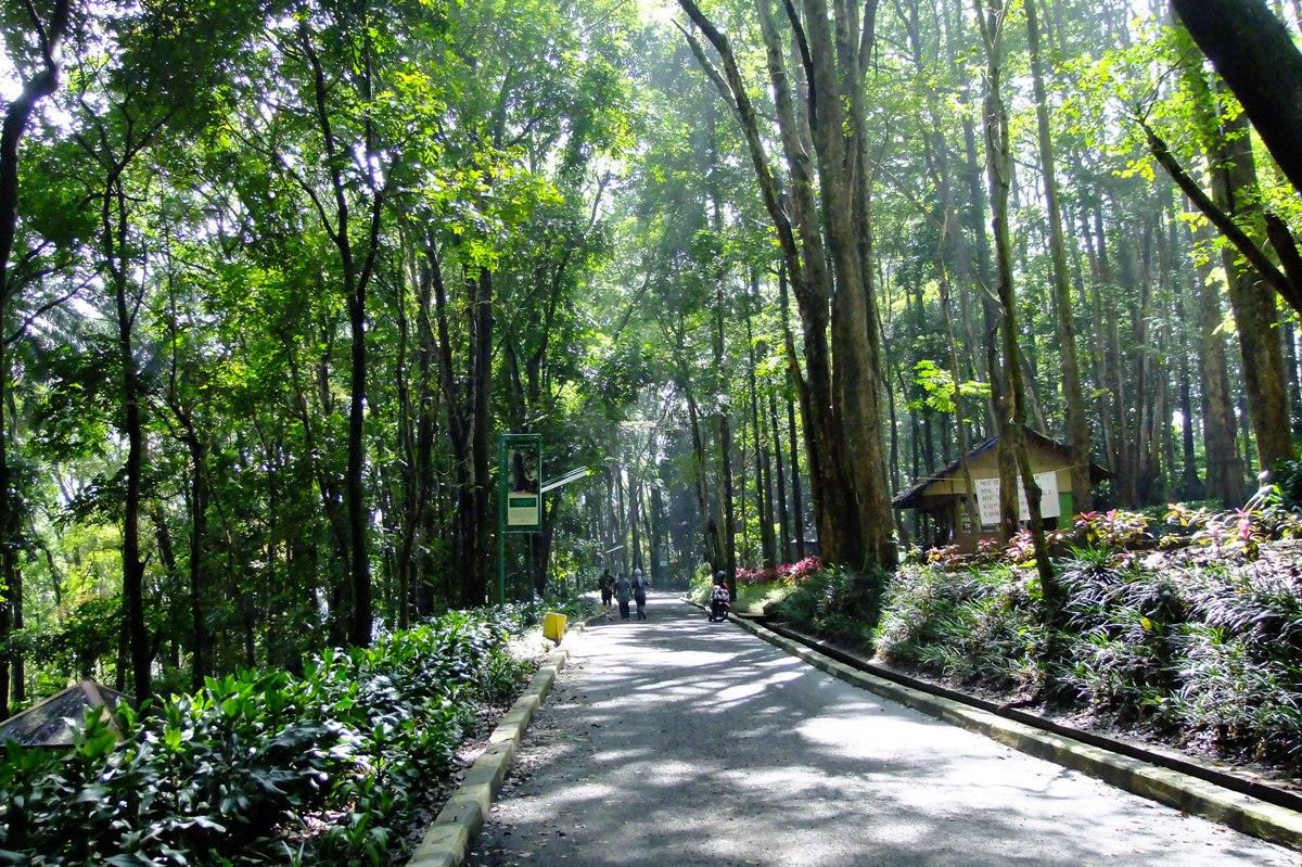 12 Destinasi Wisata Pesisir Sisi Lain Keindahan Jakarta Utara
