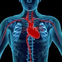 Divonis Mengalami Pembesaran Jantung 55%, Harus Bagaimana?