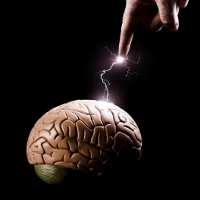 Otak Dibuat Mati Suri Demi Hidup 1000 Tahun Lagi