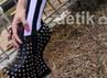 Sepatu hak tinggi hitam paku-paku (studded) ala Lady Gaga yang di pakai Vicky Shu. Gus Mun/detikHOT.