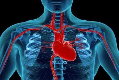 Apa Pantangan Makanan untuk Pasien Jantung Koroner?