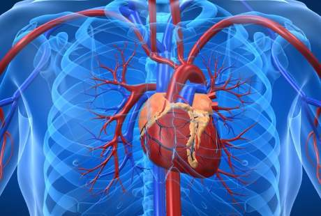 Jantung Membengkak, Adakah Alternatif Selain Minum Obat?