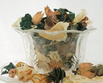 5 Cara Membuat Pengharum Ruangan Alami dari Tanaman Herbal