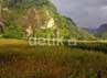 Bersama ribuan warga. Obyek wisata ini memang baru diresmikan Menkominfo Tifatul Sembiring.