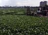 Pemerintah DKI Jakarta berencana membangun kawasan waduk ini menjadi tempat rekreasi.