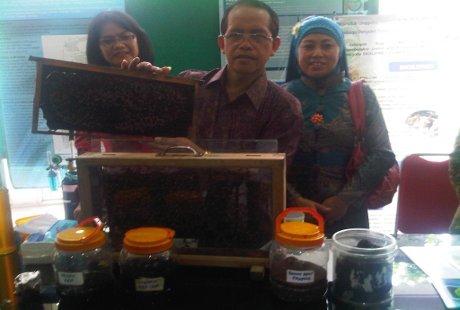Peneliti Unair Obati Pasien HIV dengan Propolis Lebah