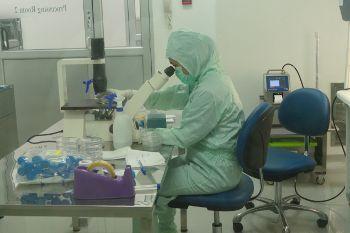 Yuk, Intip Laboratorium Pengolahan Stem Cell Pertama di Indonesia