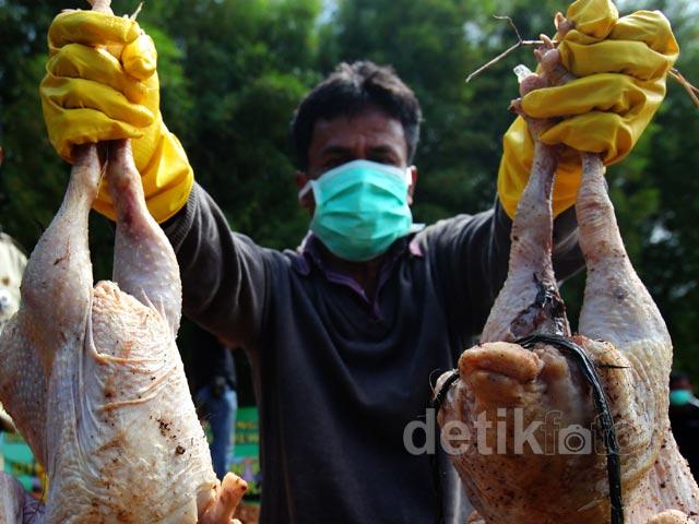 Daging Berformalin Hingga Bangkai Ayam Dimusnahkan