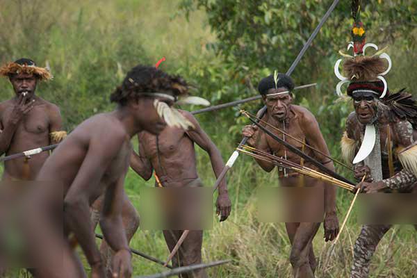 serunya menonton perang perangan suku dani di papua rh travel detik com