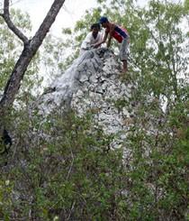 Di Madura, Semburan Lumpur Mirip Lapindo Telah Jadi Gunung