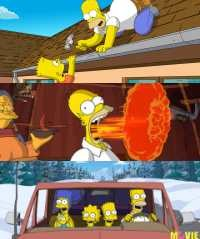 Vcd Dvd The Simpsons Movie