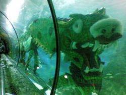 Rayakan Imlek, Barongsai dan Naga Goyang Dunia Bawah Laut