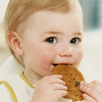 Hasil gambar untuk makanan padat bayi