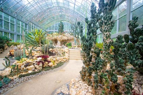 Rumah Kaktus Bali Botanical Garden
