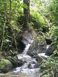 Aliran sungai di sela perjalanan