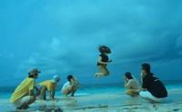 Jump Jump Juuuummmppp !!!!