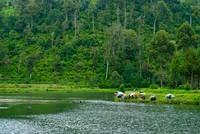 Situ Cisanti dan para pemancing