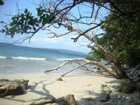 Cibom Island, wild and beautiful