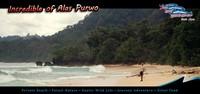 alas purwo beach
