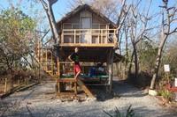 Perama Resort Treehouse