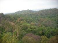 Hutan di pulau sangiang