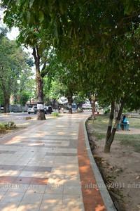 Suasana hijau dan rimbun di Kambang Iwak