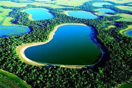 Pantanal (scienceclarified.com)