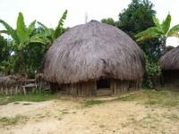 Rumah Honai (Sumber: brianabimanyu31.blogspot.com)