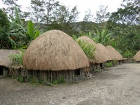 Rumah Honai (Sumber: rumah-adat-indonesia.blogspot.com)
