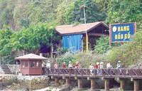 Hang Dau Go (halong-travel.com)
