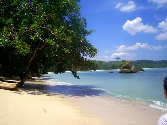 Pantai Teluk Penyu (Sumber: pics4share.blogspot.com)