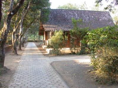 Suasana Desa Wisata Candirejo (sumber: borobudurfieldschool.wordpress.com)