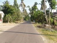 Jalan menuju Desa Candirejo (sumber: iwanuwg.wordpress.com)