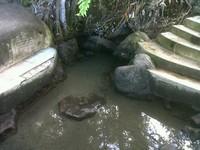 Air panas Akesahu (Afif/detikTravel)