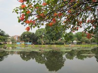 Taman Situ Lembang sangat asri (Fitraya/detikTravel)