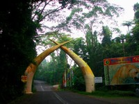 Taman Safari (sumber: bestindonesiatourism.blogspot.com)
