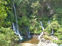 Suasana hijau mengelilingi lokasi Curug Orok (Dinas Pariwasata dan Budaya Jawa Barat)