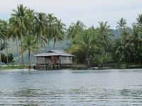 Pulau Hosena (Sastri/ detikTravel)