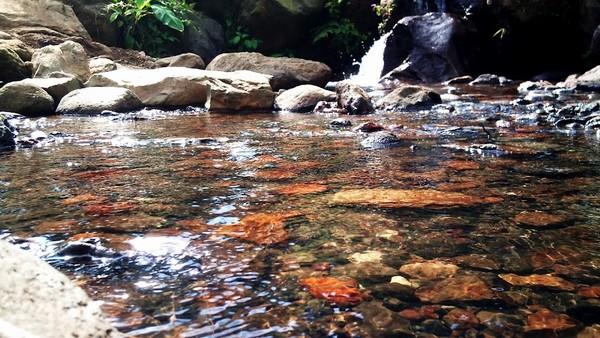 Air jernih kolam Mandala