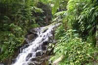 Air Terjun Irenggolo yang tidak terlalu tinggi memiliki bentuk berundak dengan bebatuan yang ada di tebingnya