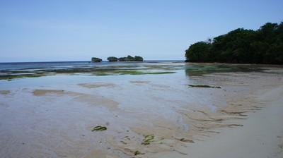 Aneh Tapi Nyata, Pantai Ini Punya Ratusan Mata Air Tawar
