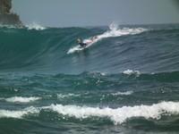 seorang surfer sedang menikmati ombak