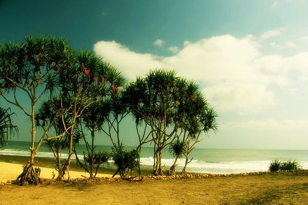 Panorama Pantai Goa Watu Lawang