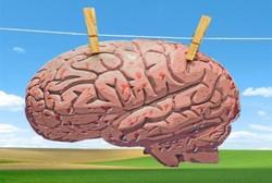 Dahlan Iskan Berbagi Pengalaman, Kontroversi Cuci Otak Mencuat Lagi