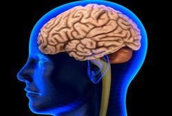 Cuci Otak Sembarangan Risikonya Nyawa Bisa Melayang