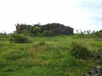 Bukit eksotis dan hijaunya rerumputan.jpg