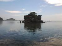karang eksotis kondang merak