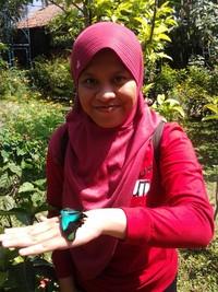 Cantiknya kupu di tangan
