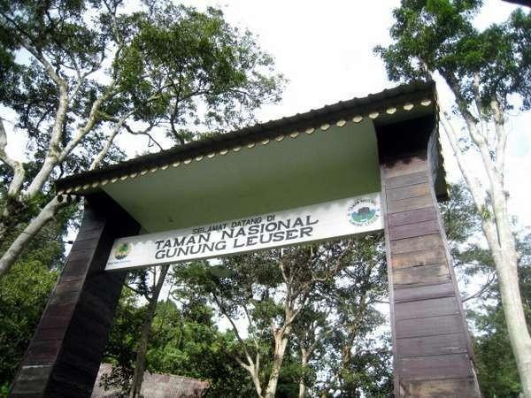 Selamat datang di Taman Nasional Gunung Leuser (Achmad Alkatiri/ACI)